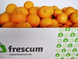 naranjas de zumo y de mesa